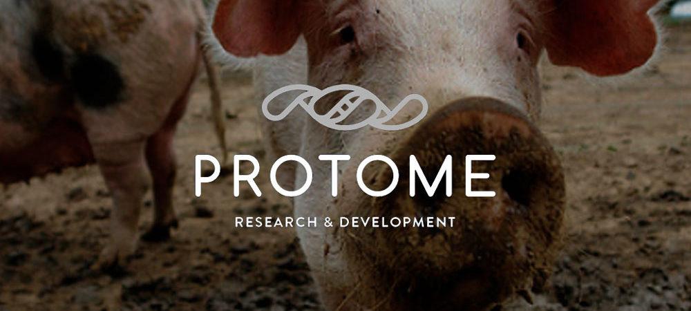 Protome